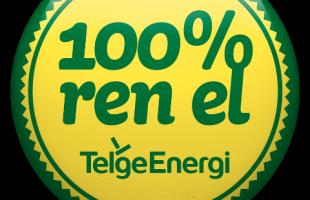 a 100-ren-el-telge-energi